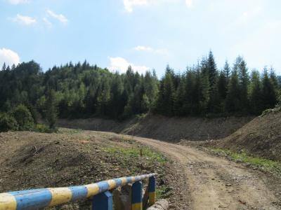 У Берегометі збудували нові лісові шляхи
