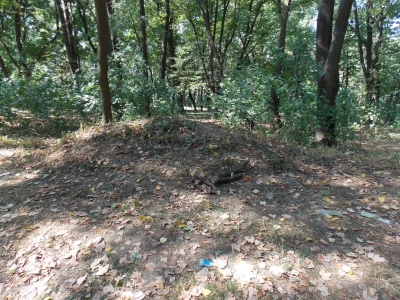 Парк Шиллера перетворюють у сміттєзвалище (ФОТО)