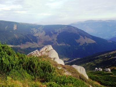 Невідома Буковина: скелі, де росте едельвейс