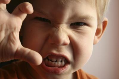 Агресивність передається генами