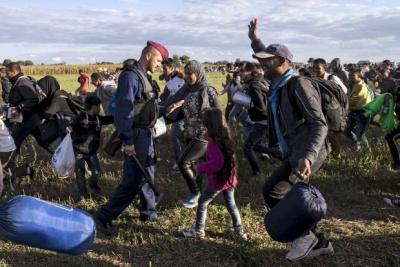 Лише за добу угорський кордон перетнули понад 4 тисячі мігрантів