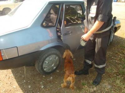 На кордоні в автівках знайшли набої та схованки з цигарками