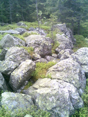 Невідома Буковина: чотири печери  довжиною майже сто метрів