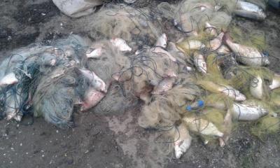 На Дністрі затримали двох браконьєрів з червонокнижною рибою (ФОТО)