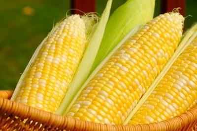 Кукурудза допоможе поліпшити зір