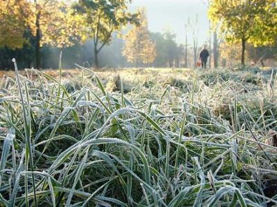 Арктичне повітря принесе в Україну приморозки