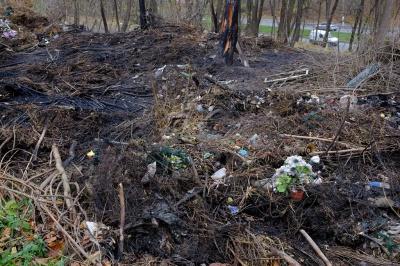 З'явилися світлини з пожежі на історичному кладовищі Чернівців (ФОТО)
