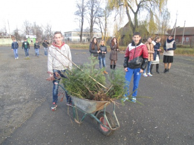 Буковинські школярі до річниці Майдану посадили ліс (ФОТО)