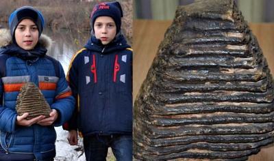 Школяр із Буковини, який знайшов зуб мамонта, хоче на тому місці пошукати ще його скелет