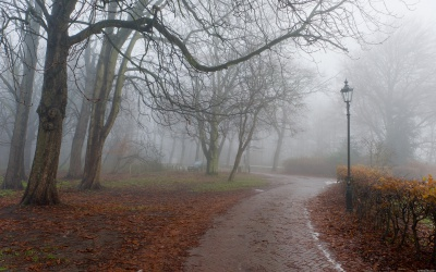 На Буковині - похмура погода, вранці туман