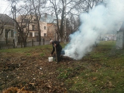 У Чернівцях оштрафували завгоспа пологового будинку за спалювання листя
