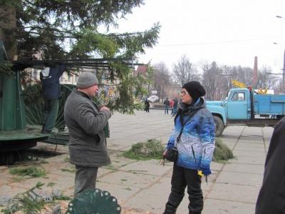 Новорічна ялинка у Чернівцях буде золотисто-червона (ФОТО)