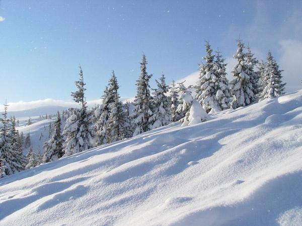 Відпочивальників уКарпатах попередили про можливість лавин