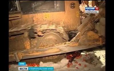 У Росії бульдозером знищили чверть тонни санкційних мандаринів з Туреччини