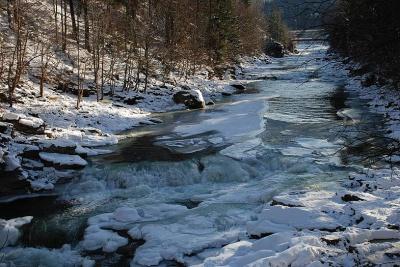 Через танення снігу підніметься вода в Пруті
