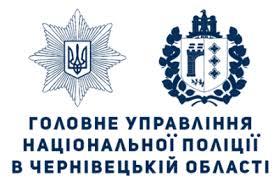 """Поліція Буковини затримала тінейджерів, які """"чистили"""" авто"""