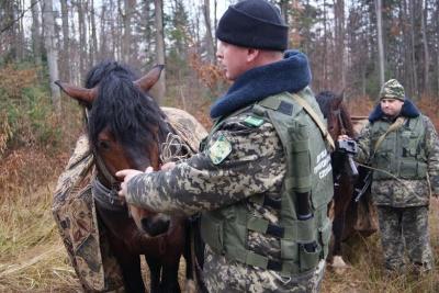 """На Буковині затримали """"караван"""" із цигарками, який прямував до Румунії"""