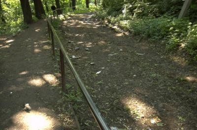 У Чернівцях зелентрест просить у міськради більше людей для прибирання