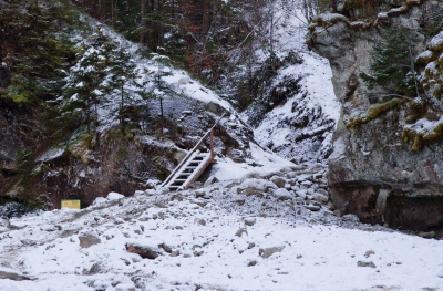 Через один зі Смугарських водоспадів возять висохлі дерева, бо нема іншої дороги
