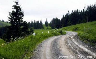 На Буковині створили громадську організацію для доріг