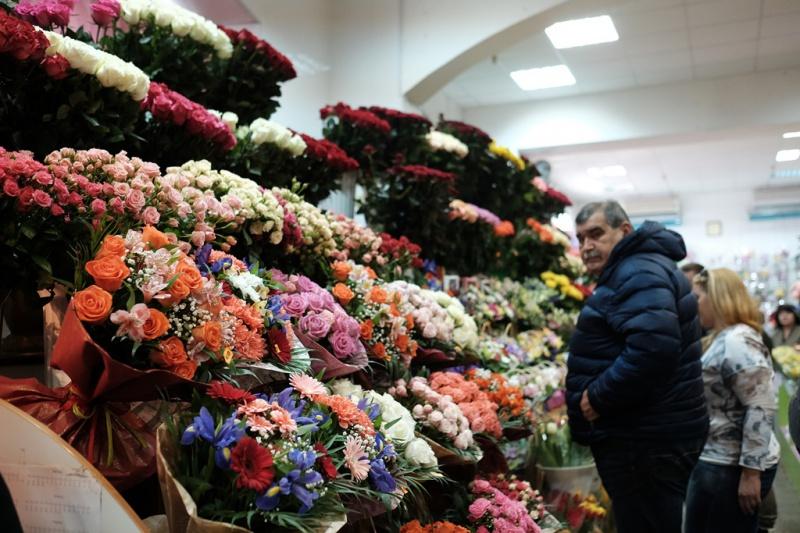 Желтые цветы с весны до осени: 50 видов цветов для цветника