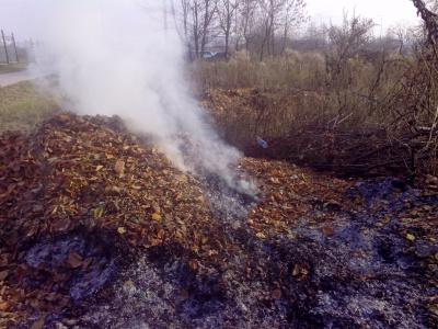 Чернівчанам нагадують: за спалювання сміття - штраф до 1360 гривень