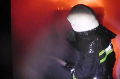 У Чернівцях пожежники врятували кота з палаючої квартири