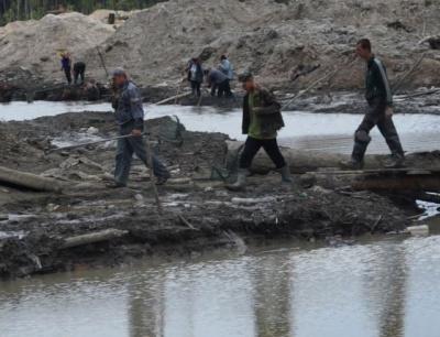 На Рівненщині нелегальні копачі бурштину поранили 7 правоохоронців