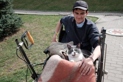 Кіт став кращим товаришем чернівчанина на візку