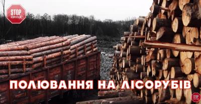 Активісти з Чернівців викрили вражаючі масштаби нищення лісів Карпат (ВІДЕО)