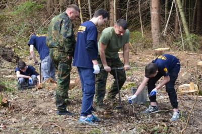На Буковині створили 32 гектари лісів (ФОТО)