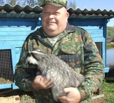 У лісах Буковини порахували оленів, кабанів і вовків