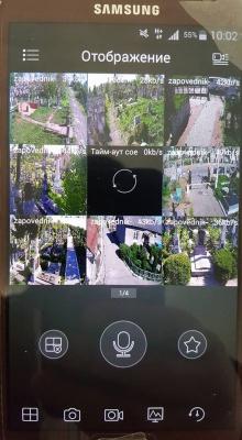На старому кладовищі в Чернівцях встановили відеоспостереження