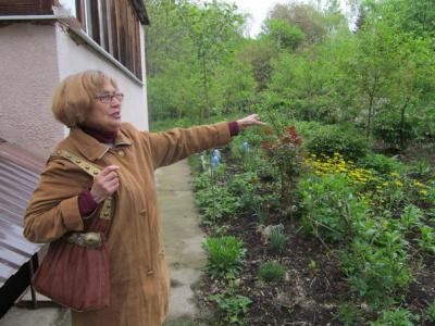 Чернівчанка біля багатоповерхівки зробила сад