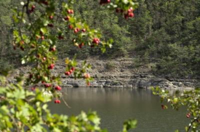 Маловідомі пам'ятки природи на Буковині: печера, що заворожує іноземців, і житло чапель (ФОТО)