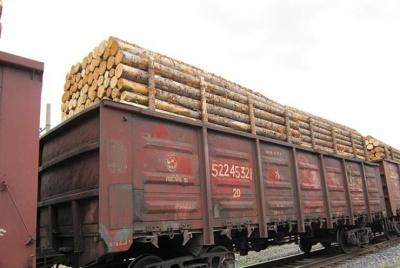 Росіяни вивозять український ліс до Європи, а наші їм допомагають, - Москаль