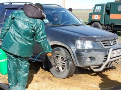 """На межі Буковини та Хмельниччини встановили санітарний контроль через спалах """"африканки"""""""
