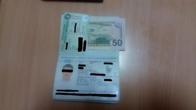 50 доларів за саджанці троянд: молдованин на Буковині намагався вручити хабар прикордоннику