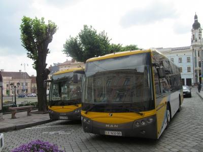 У Чернівцях придбали два автобуси для перевезення пільговиків