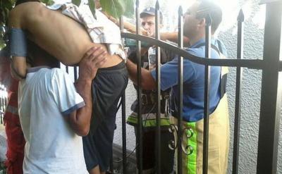 На Буковині чоловік впав з дерева на металевий паркан - пробив руку (ФОТО)