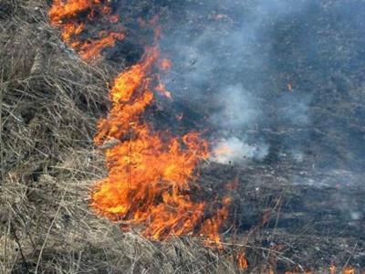 У селі на Буковині загорілася суха трава - постраждала жінка