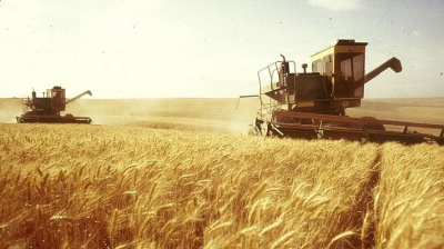 Чернівецька облрада підтримала звернення аграріїв про повернення спецрежиму ПДВ