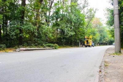 У Чернівцях водій вантажівки заснув за кермом і врізався у стовп (ФОТО)