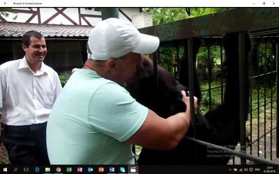 Власник ведмедя з Кельменців заперечив, що тварина голодує та потребує допомоги