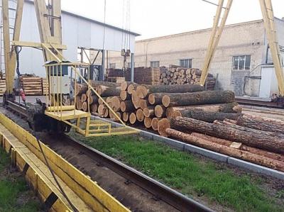 Луценко похвалився затриманням керівників лісгоспів на Буковині