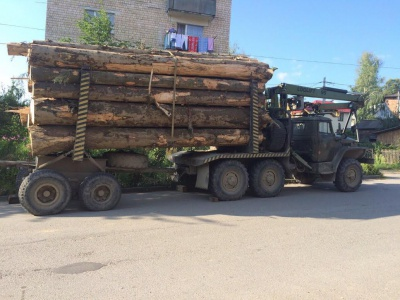 На Буковині СБУ затримала вантажівку, яка незаконно перевозила деревину
