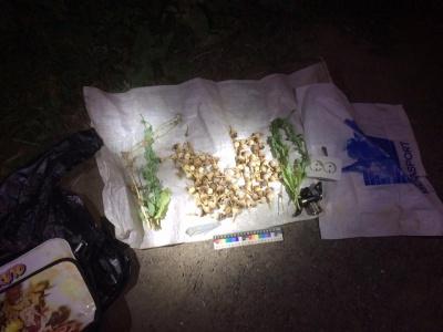 У Чернівцях поліція затримала велосипедиста, в якого виявили понад 100 головок маку