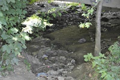 У мікрорайоні Чернівців майже повністю висохла річка (ФОТО)