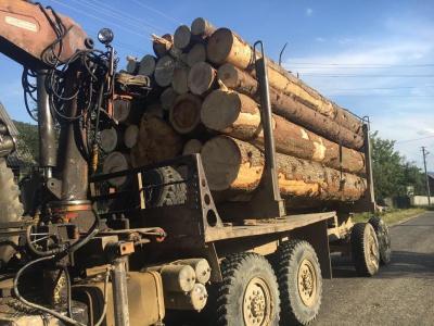 На Буковині затримали вантажівку з деревиною із підробленими документами (ФОТО)