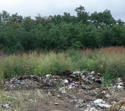 Екоінспекція порахувала шкоду від висипаного сміття в Іванківцях